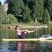 Hovie SUP | sup yoga3