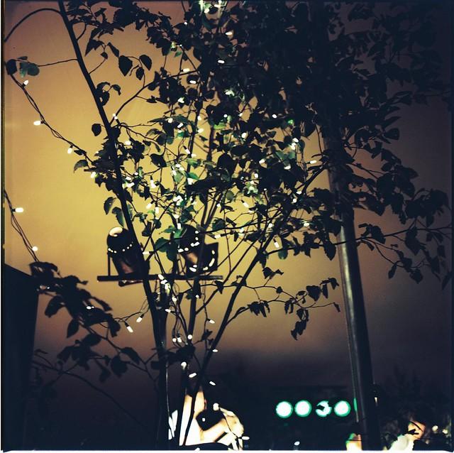 Lights, Lights.