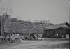 Arbeiderswoningen. (Stichting Surinaams Museum) Tags: spoor suriname woningen spoorbaan arbeiders aanleg