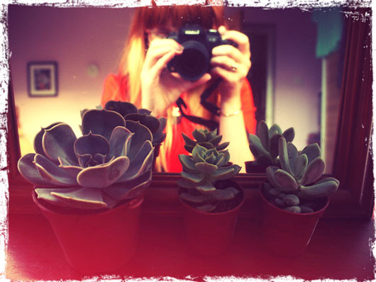 photolog9