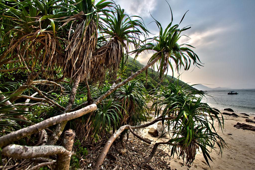 Bluff Island (沙塘口山)