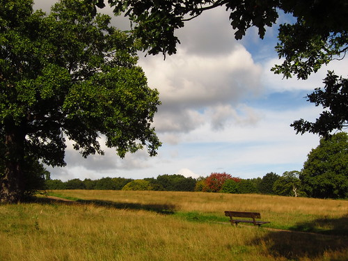 Tumulus Field, Hampstead Heath