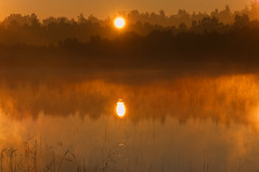 Early Morning Mist (pni) Tags: morning light sea sun mist reflection water sunrise suomi finland waterfront multipleexposure shore watersedge treeline tripleexposure multiexposure pietarsaari layered j11 jakobstad skrubu pni pekkanikrus