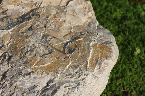 184/365 08/31/2011 Ring