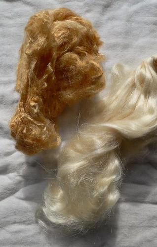 Lichen dyed tussah silk fibre