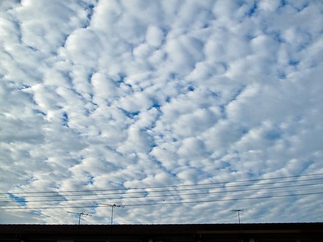 IMG_0043 Altocumulus Clouds, Malaysia