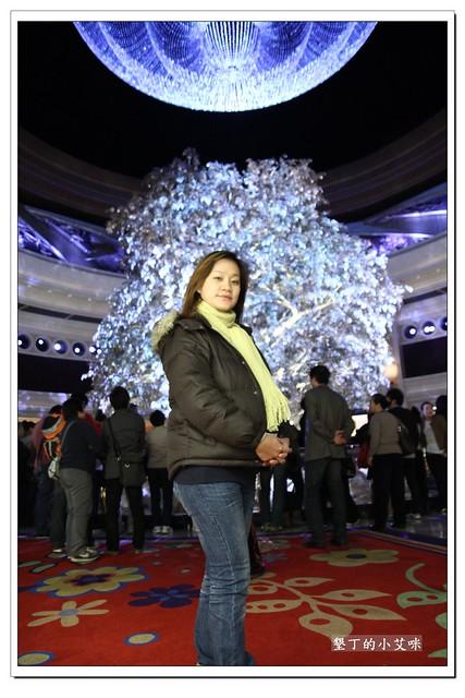 澳門永利酒店富貴龍及吉祥樹IMG_7971