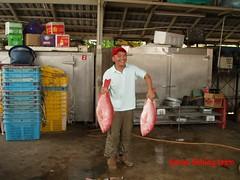 20090911 (fymac@live.com) Tags: mackerel fishing redsnapper shimano pancing angling daiwa tenggiri sarawaktourism sarawakfishing malaysiafishing borneotour malaysiaangling jiggingmaster