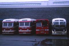 Buses for Sale 1968 (Guy Arab UF) Tags: bus guy buses for sale tiger royal highland arab western 1968 alexander smt k6 uf leyland coronation k1 ribble reliance aec omnibuses burlingham parksofhamilton esd221 eag896 eck576 lva269