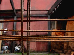 oxida e neva (Sociotao) Tags: tristeza backyard rust iron solitude time rusty patio relationship forgotten worn soledad melancholy temps quintal sorrow ferrugem tempo fer tristesse solido rouille tiempo melancolia oxidado ferro oxidized desgastado relacin proteccin enferrujado relation rouills olvidado unprotected port gastada relacionamento mlancolique oxyd melanclica esquecimento esquecido oublis protge quntal xidodehierro desprotegido