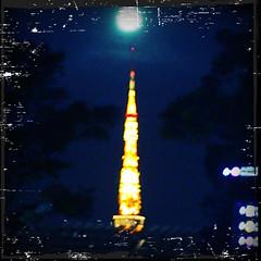 東京タワーと名月