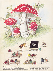 In Brummelstadt / Bild 7 (micky the pixel) Tags: mushroom bug buch book livre scool schule kfer pilz fliegenpilz kinderbuch bilderbuch fritzbaumgarten inbrummelstadt pestalozziverlag