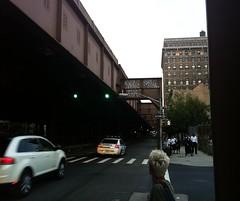 ADEK, LEWY, NEKST, SHOAN, MTA crew over TKO crew (S C R A T C H I E S) Tags: nyc graffiti mta adek tko nekst lewy shoan btm