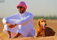 Hunting dog ...   (Naif AL-Essa) Tags: dog canon eos is tripod hunting battery ii 7d grip 70200 f28 580ex manfrotto lense lenses speedlite 430ex   190xprob 055xprob    bge7