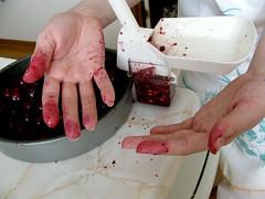 maraschino cherries 8