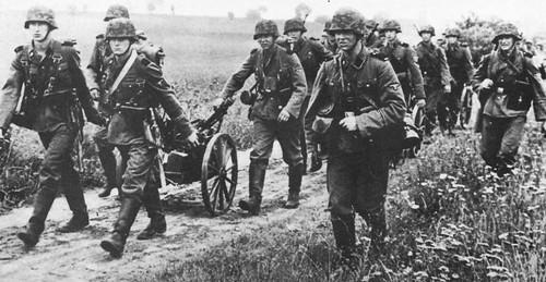 SS-Heimwehr