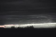 ::::::::::::::::::::::::. (@) Tags: pink trees light sky bw clouds dark landscape horizon