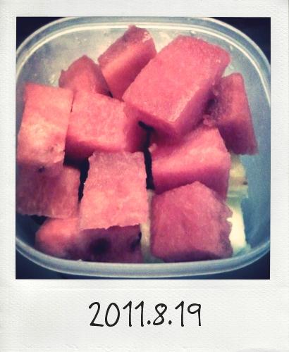 20110819_Photo Diet_2