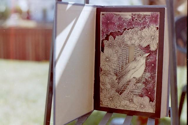 birdy book