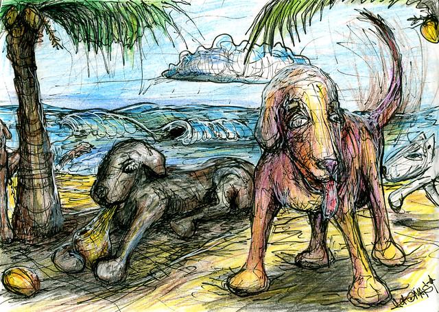Strandhundar