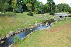 Stream in Nakajima Park / 中島公園の川
