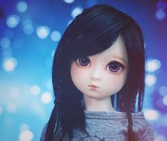 new wig for Chou (Cyristine) Tags: blue black girl ball hair asian dami doll bokeh wig dreamy bjd monique msd jointed harang elfdoll sundai