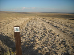 Trail in the Great Divide Basin