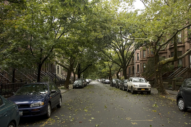 post-Irene in Park Slope