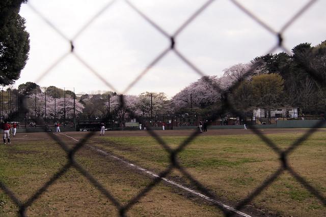 110410_152353_三ッ池公園