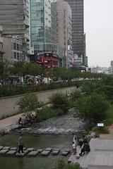 都会のオアシス / Urban oasis