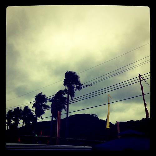 風が強くなって来ました。も少しで怒髪天です #sunsetlive