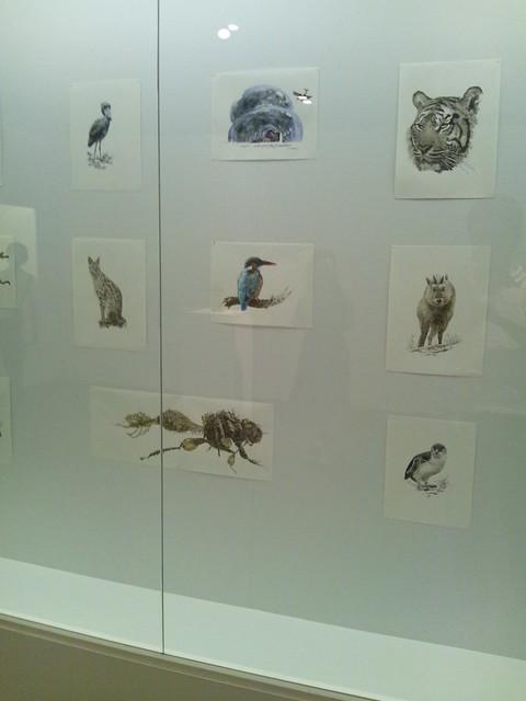 動物がいっぱい-横浜トリエンナーレ2011の写真