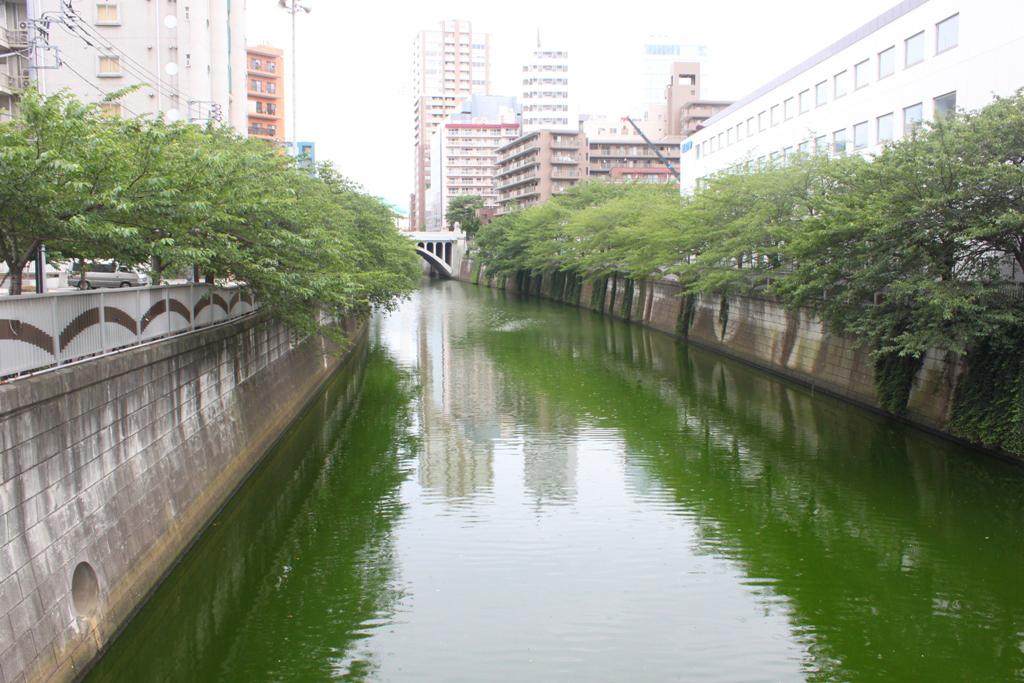 Meguro Walking Guide (13)