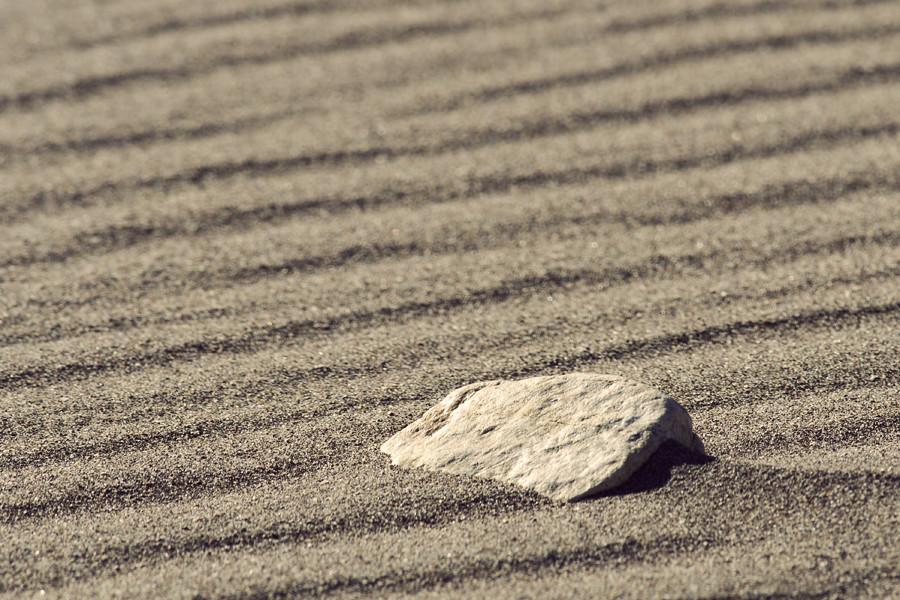 sand13 copy