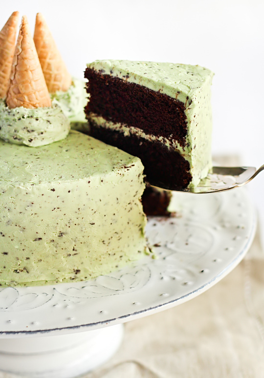 mint_choc_chip_cake-5