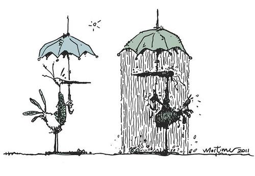 1435 Patos lluviosos