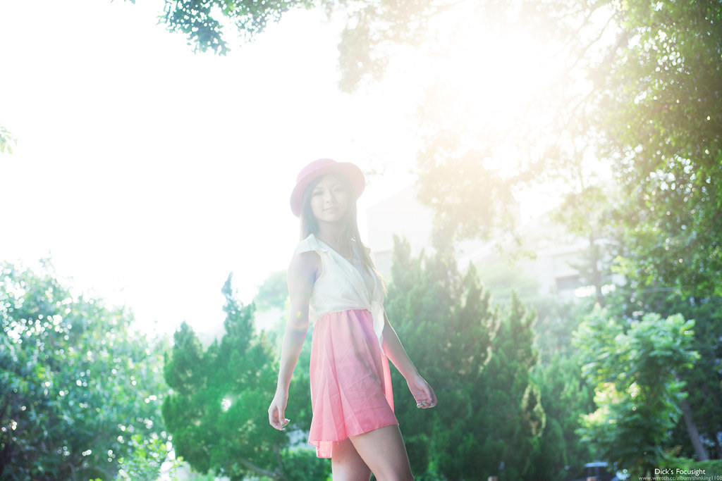 +夏の日(なつのひ)+