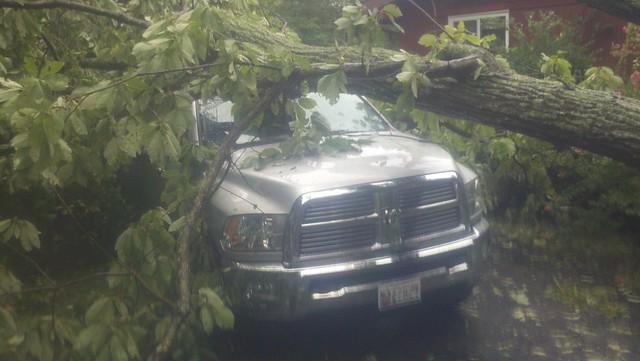tree crazy accident dodge ram hurricaneirene dr09 lightgrayorsilvertruck passengersideheadlightview