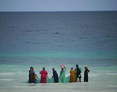 Fisherwomen (Jo Pye) Tags: ocean life africa travel pink blue ladies girls light sea summer sky people woman brown sun fish seascape color colour travelling net beach colors beautiful beauty sunshine yellow skyline landscape tanzania island lumix bucket fishing workers women aqua paradise colours bright african turquoise candid horizon headscarf snapshot working azure photojournalism panasonic traveller backpacking catching tropical tropicalisland catch g1 zanzibar colourful ideal idyll favourite backpacker wading paradiseisland reportage fisherwomen trawling tanzanian mybestshot 2011 carryingonhead jopye bestshot2011