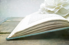 fairytale (Grace & Ivy) Tags: wood old white fairytale vintage book petals bokeh antique turquoise teal crate