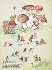 In Brummelstadt / Bild 3 (micky the pixel) Tags: wedding mushroom bug buch book teddy hochzeit livre kfer pilz kinderbuch bilderbuch fritzbaumgarten inbrummelstadt pestalozziverlag