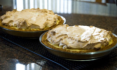 Flapper Pie (Vanilla Cream Pie) (madlyinlovewithlife) Tags: food pie dessert yummy pies meringue creampie custardpie grahamcrust vanillacreampie meringuetopping flapperpie vanillapuddingpie
