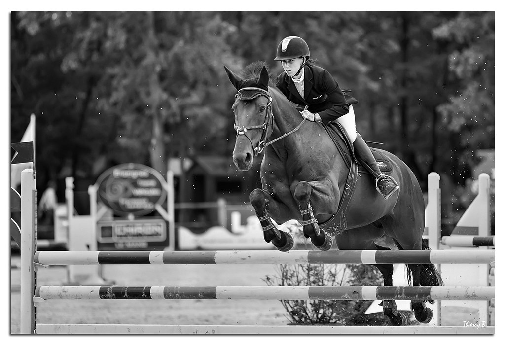 few b&w horse jumping pictures
