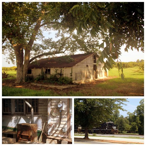 gardner farm (locust grove, south GA)