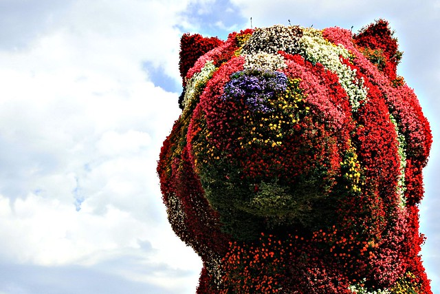 Day 354 - Puppy by Jeff Koons