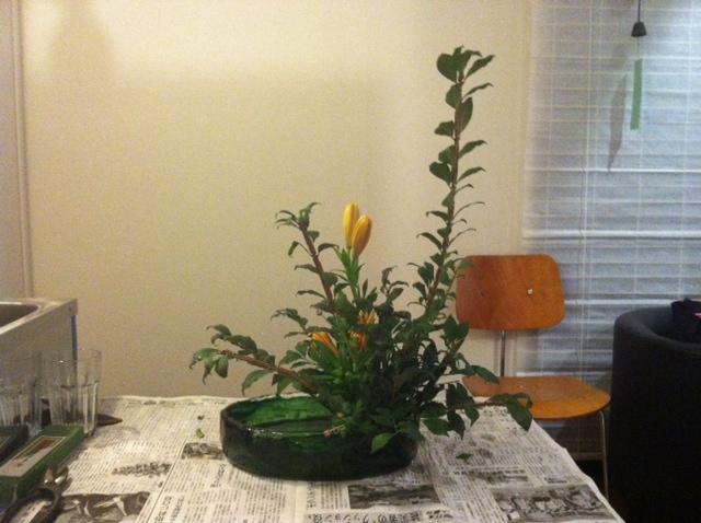 ニシキ木、スカシユリの写真