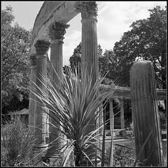 Les colonnes du parc (Cedric Doux) Tags: paris 6x6 tlr nb f11 parc 400iso parcmonceau twinlensreflex colonnes ilfordhp5plus 1500e rolleicordiiemodel6 moyenformat6x6tlrtwinlensformat120mm
