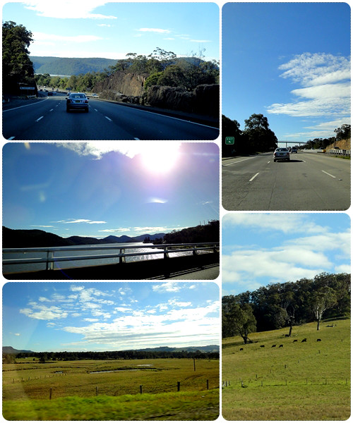 Sydney 2011 - The drive to Hunter Valley
