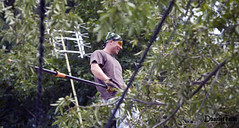 Ray 2 (Dharielt) Tags: house tree ray helmet chainsaw ax removal ban stihl