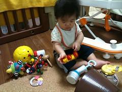 おもちゃで遊ぶとらちゃん(9/5)